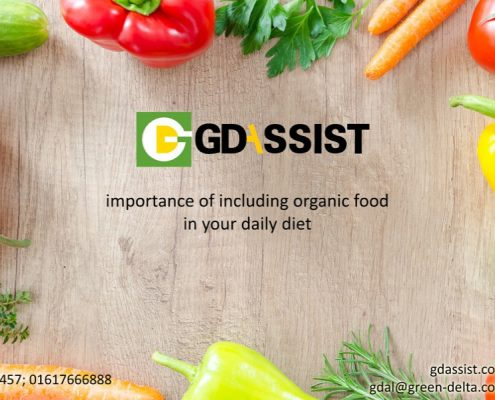 The importance of including organic food in your daily diet